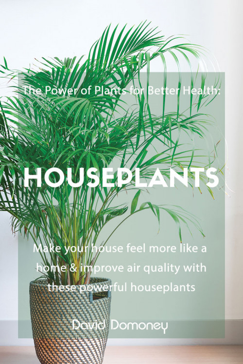 power of plants houseplants