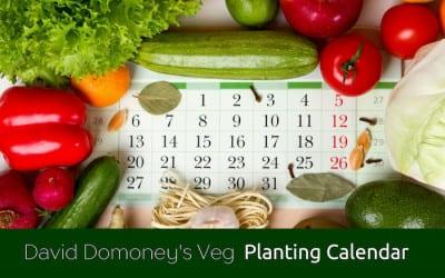 DD Veg planting calendar