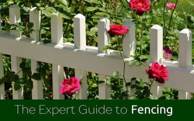 Expert Guide to Fencing