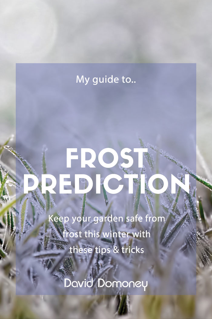 predict frost