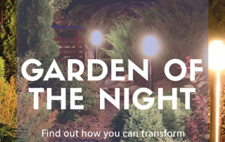 garden of the night