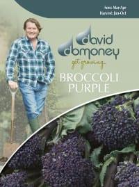 broccoli purple