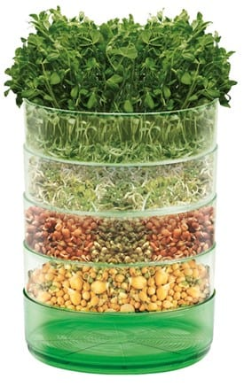 Kitchen Seed Sprouter