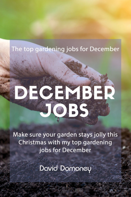 December jobs