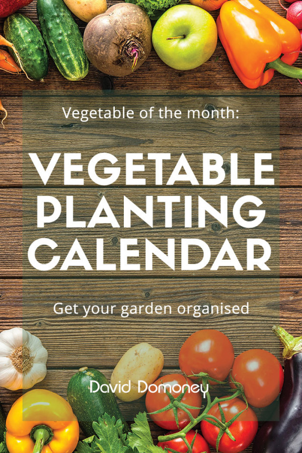 Veg Planting Calendar