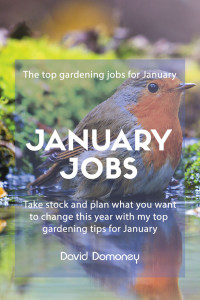 top gardening jobs for January