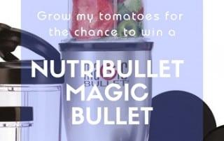 Magic Bullet Prize Draw