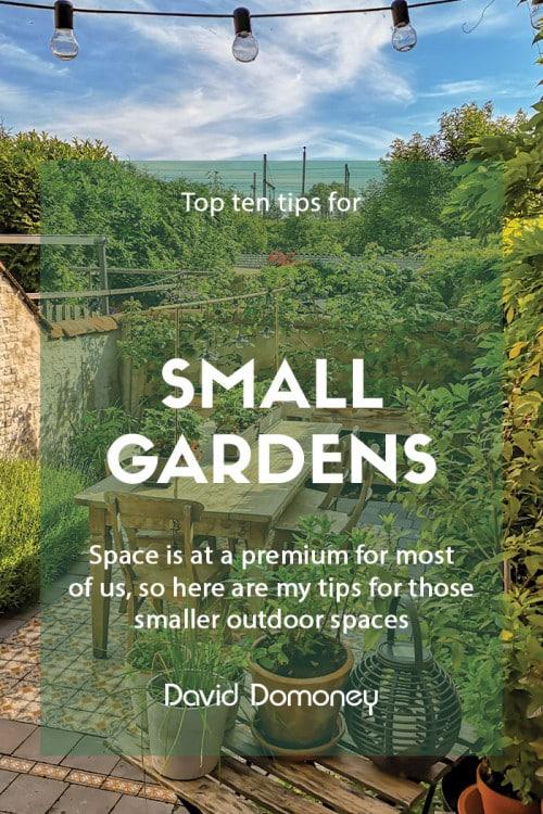 Top ten tips for small gardens