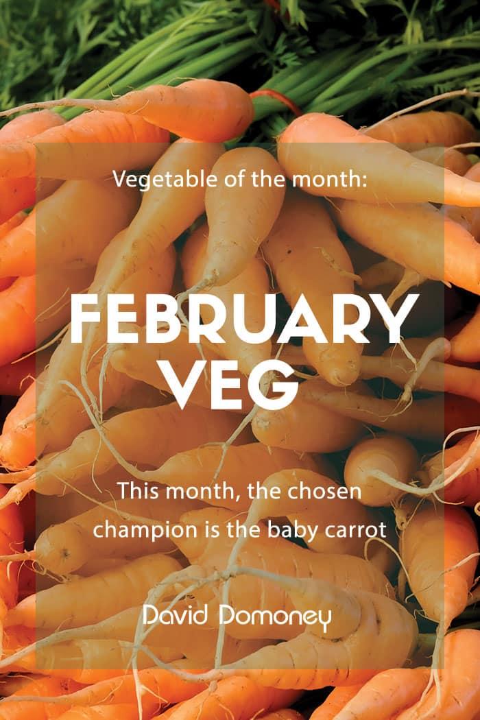 february veg