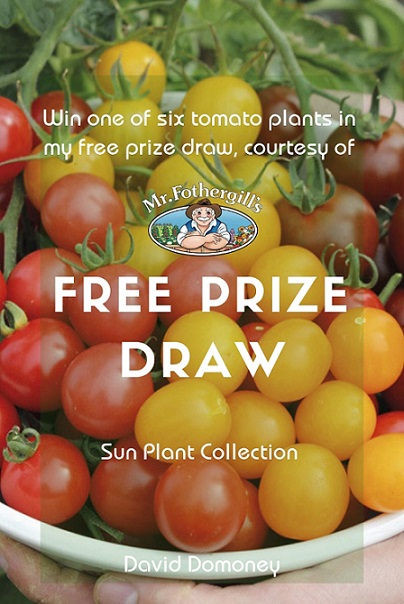 David Domoney's Tomato Plant Prize Draw