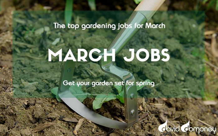 March jobs