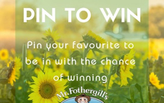 Pin to Win Sunflower Prize Draw