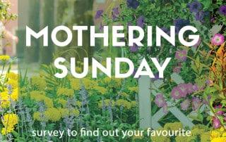 flower survey