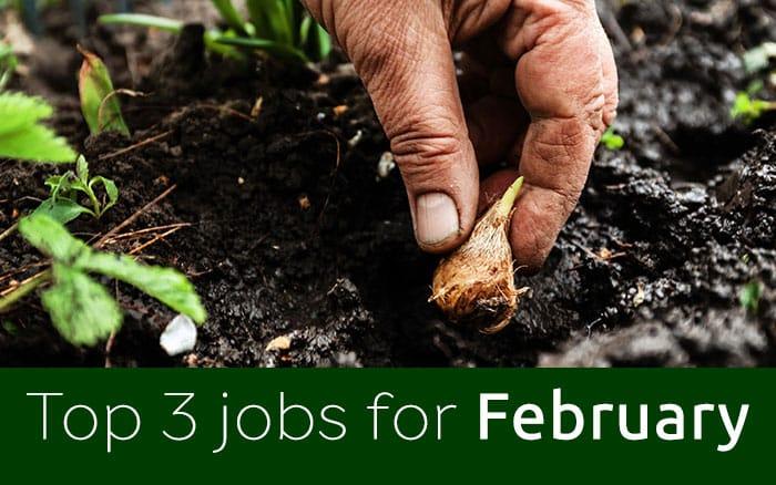 February jobs