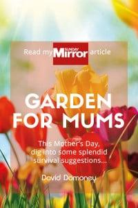 garden for mums