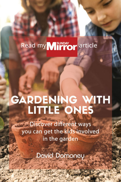 gardening with little ones