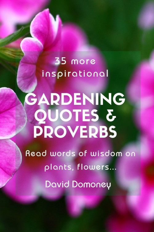 grow-your-own-garnish