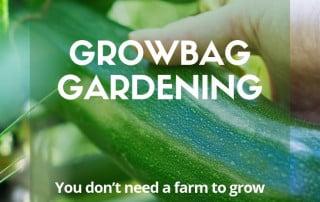 growbag gardening