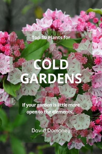 best plants