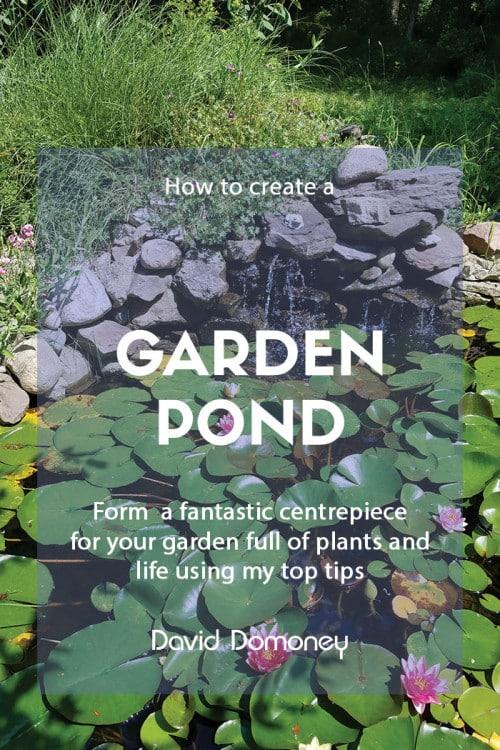 Creating a garden pond