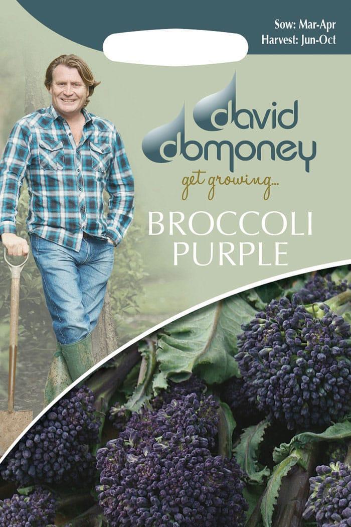 get growing broccoli purple