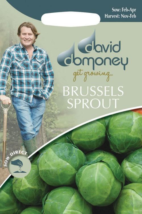 get growing brussels
