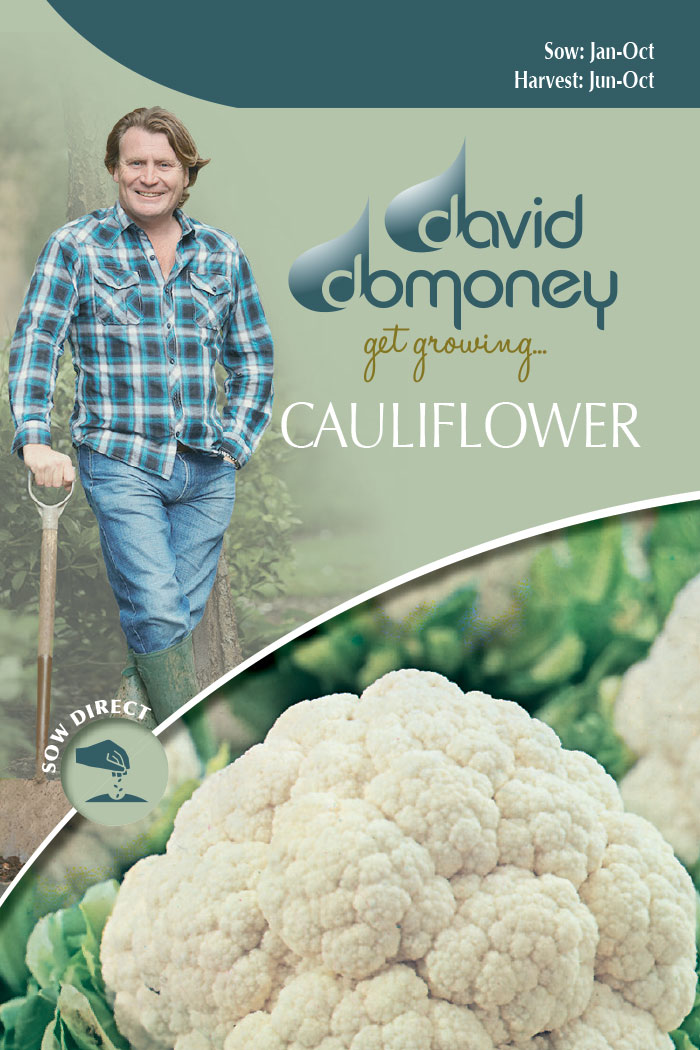 get growing cauliflower