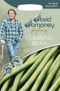 get growing climbing bean