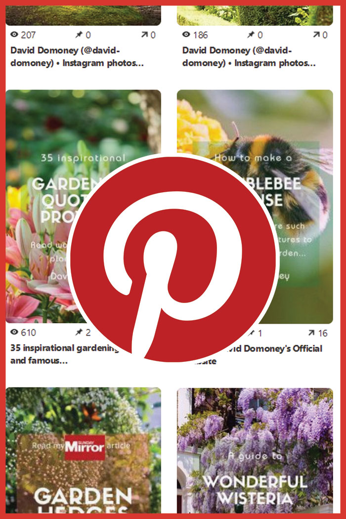Pinterest flower power
