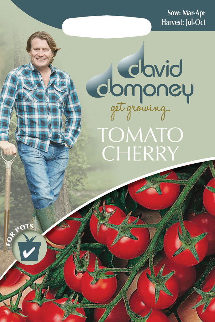 get growing tomato cherry