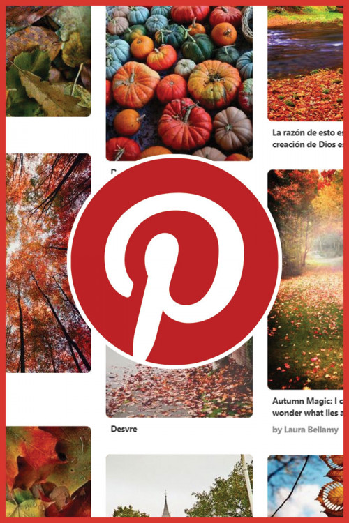 david domoney 39 s 39 gourd 39 geous pumpkin quiz david domoney. Black Bedroom Furniture Sets. Home Design Ideas