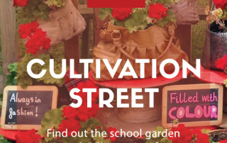 cultivation street