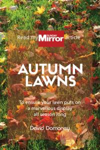 autumn lawns