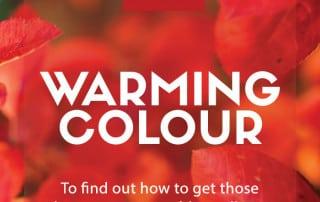 warming colour