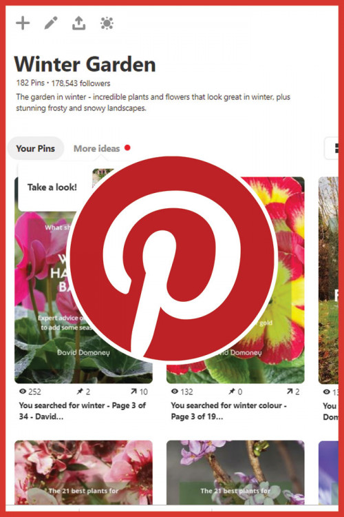 Pinterest flower power