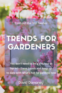Top 12 trends