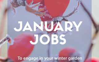 January jobs