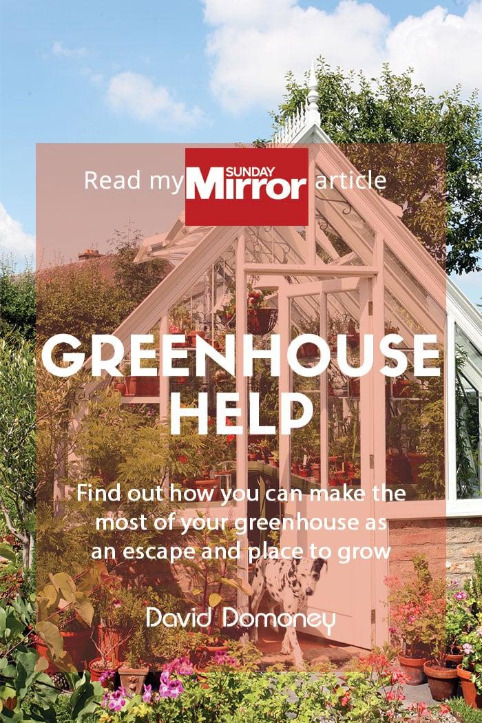 Greenhouse help