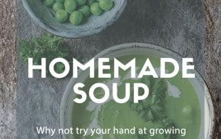 Grow soup