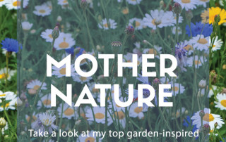 Mother Nature Mother's Day