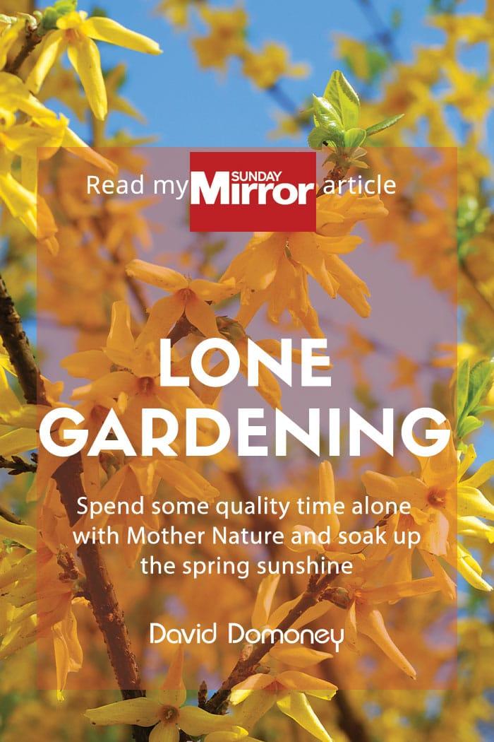 lone gardening