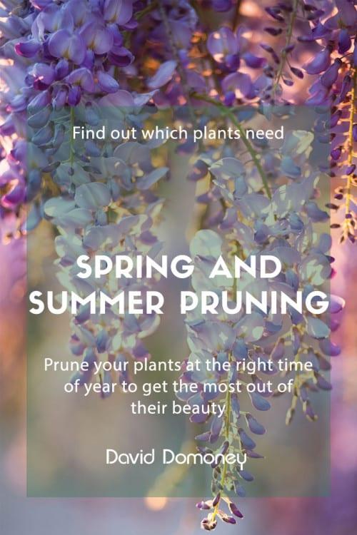 spring summer pruning
