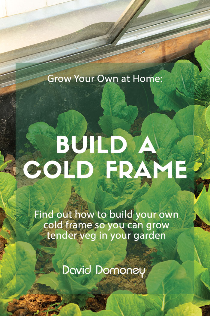 Grow your own at home cold frame
