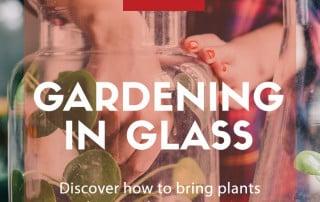 Gardening in glass