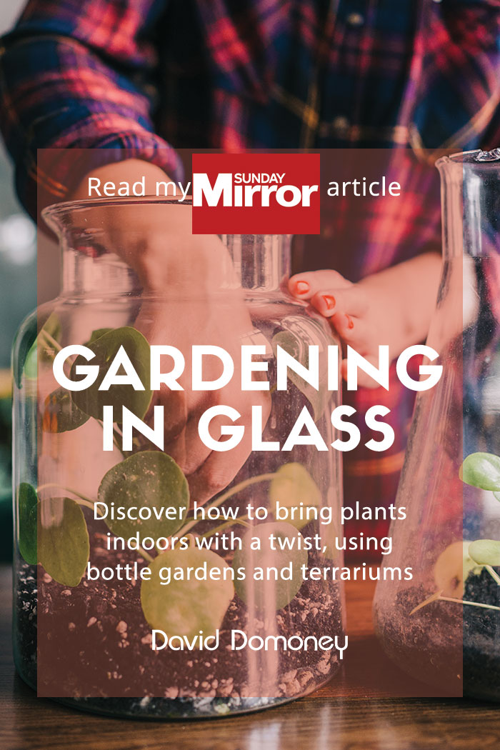 Gardening in glass