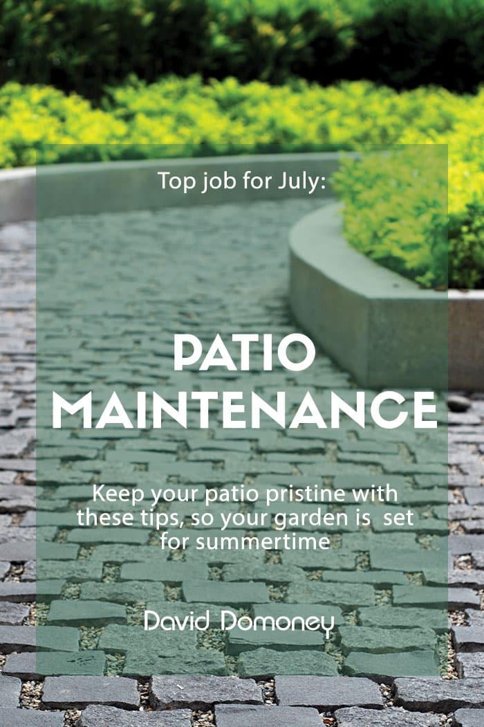 Patio maintenance