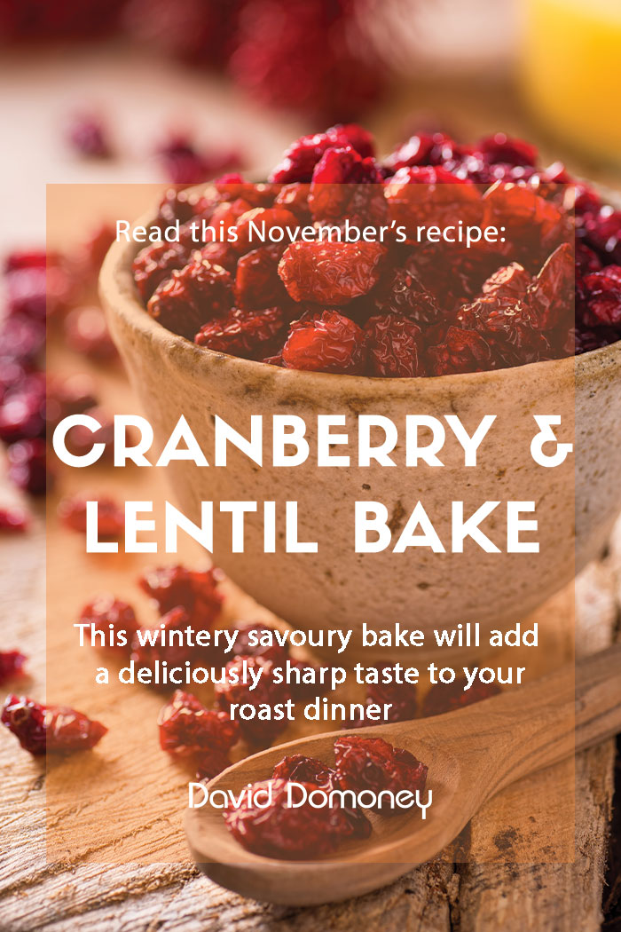 cranberry and lentil bake recipe