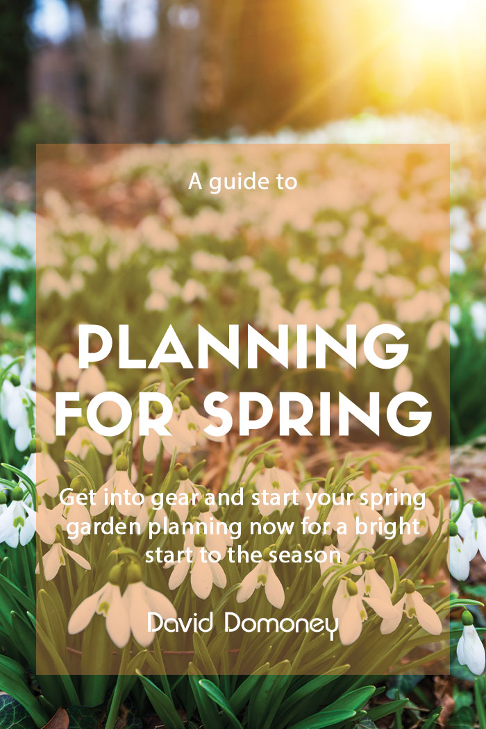 Planning for your spring garden