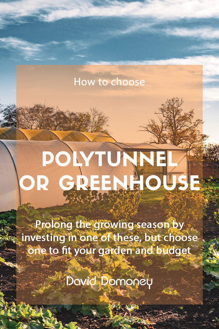 How to choose between a polytunnel and greenhouse