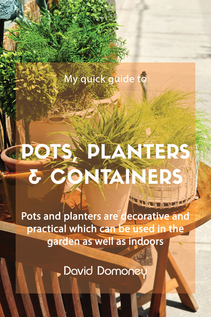 pots plants and containers